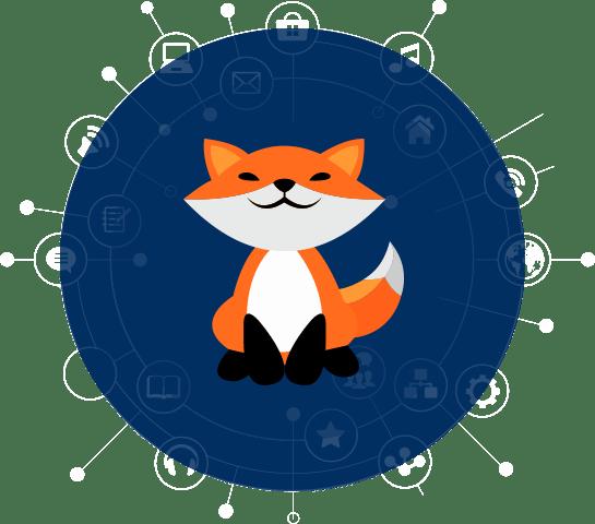 CCABLE | Netfox